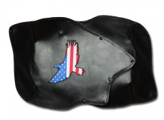 Roadsmtih Trike Honda 1800 Fender Bras Embroidered American Eagle Long