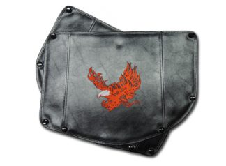 Lehman Trike Honda 1800 Fender Bras Embroidered Flaming Eagle